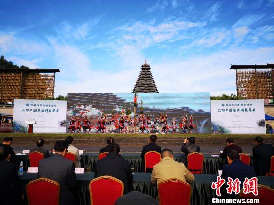 中国茶业科技年会在广西开幕以茶业助力脱贫